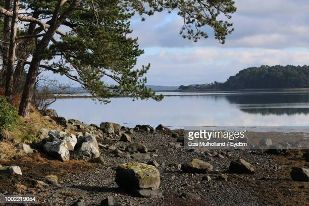 scenic view of lake against sky - lakeshore stock pictures, royalty-free photos & images