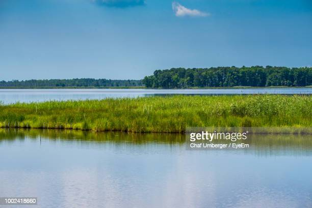 scenic view of lake against sky - chesapeake bay stock pictures, royalty-free photos & images