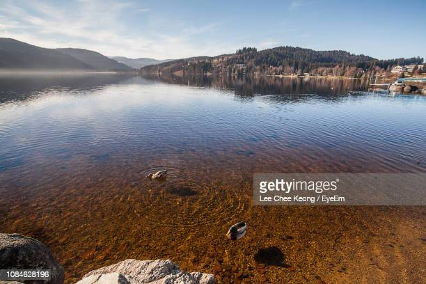 scenic view of lake against sky - baden württemberg stock pictures, royalty-free photos & images