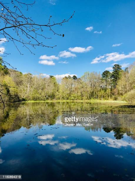 scenic view of lake against sky - reflection lake stock photos and pictures