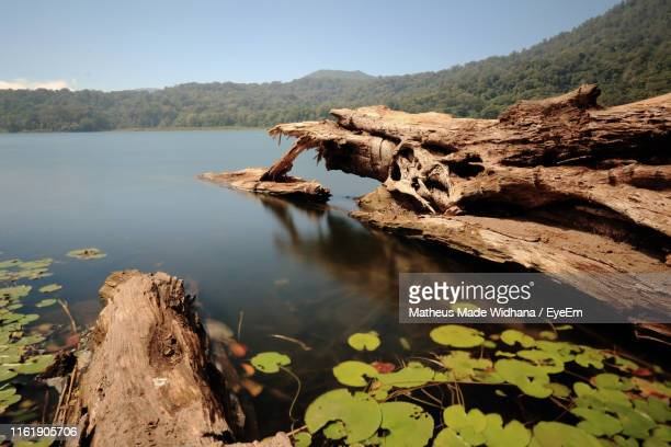 scenic view of lake against sky - made widhana stock photos and pictures