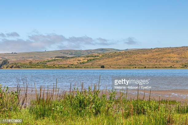 scenic view of lake against sky - peninsula stock pictures, royalty-free photos & images