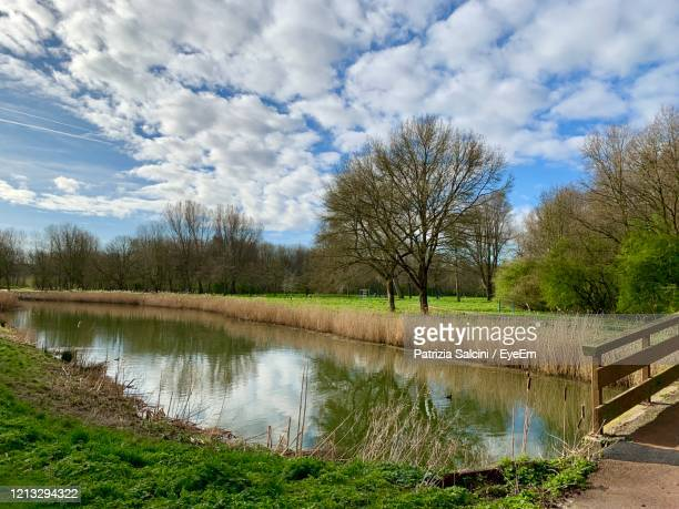 scenic view of lake against sky - hollande méridionale photos et images de collection