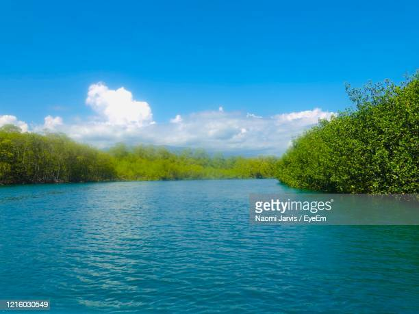 scenic view of lake against sky - naomi jarvis stock pictures, royalty-free photos & images
