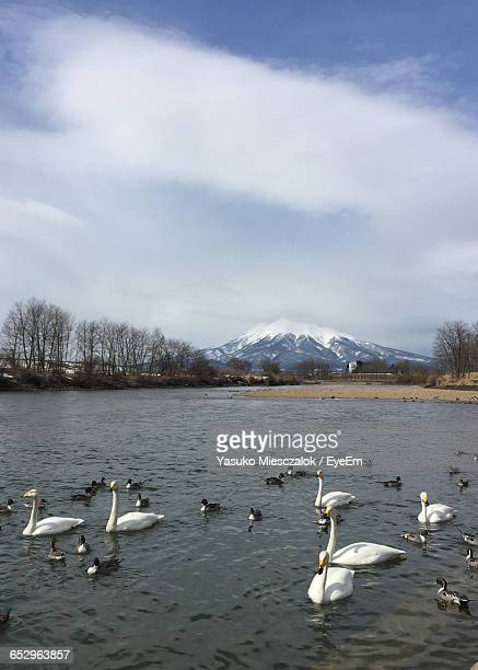 scenic view of lake against sky - hirosaki stock pictures, royalty-free photos & images