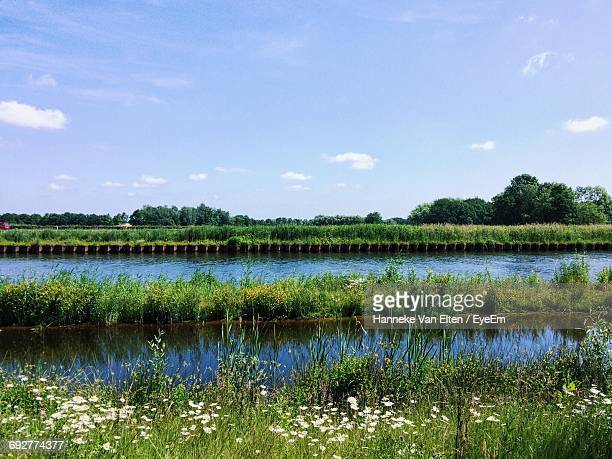 scenic view of lake against sky - sumpmark bildbanksfoton och bilder