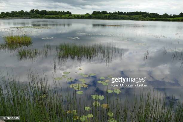 scenic view of lake against sky - county fermanagh stock photos and pictures