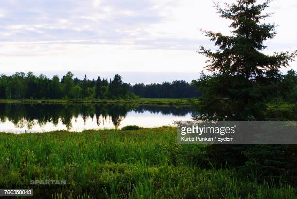 scenic view of lake against sky - sudbury canada stock photos and pictures