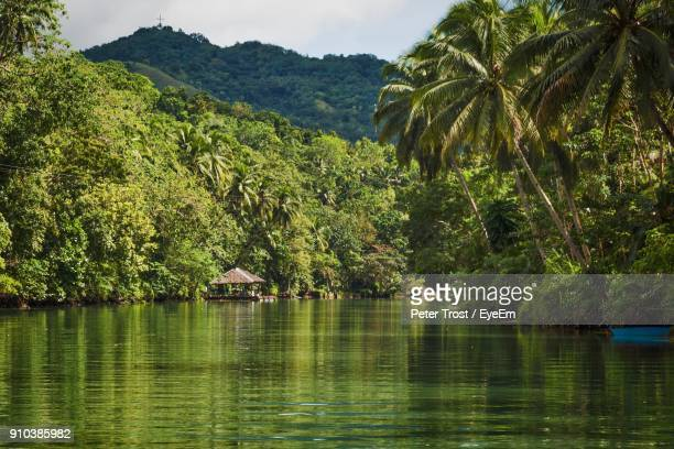scenic view of lake against sky - cebu stock photos and pictures