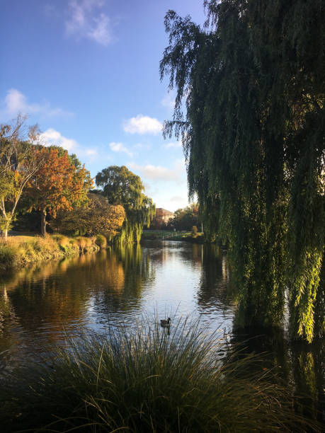 Scenic view of lake against sky,Christchurch,New Zealand