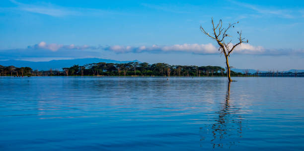 Scenic view of lake against sky,Lake Naivasha,Kenya