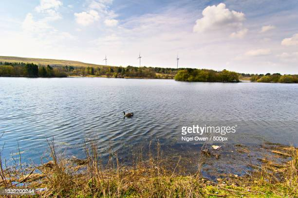 scenic view of lake against sky,parc bryn bach,united kingdom,uk - nigel owen stock pictures, royalty-free photos & images