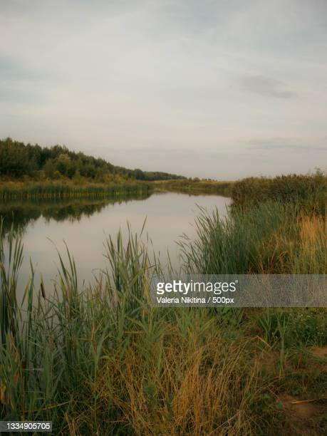 scenic view of lake against sky,russia - nikitina stock pictures, royalty-free photos & images