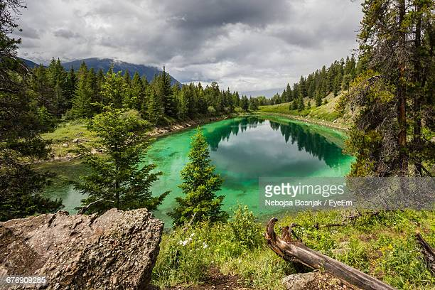 scenic view of lake amidst trees against cloudy sky at jasper national park - national landmark stock pictures, royalty-free photos & images
