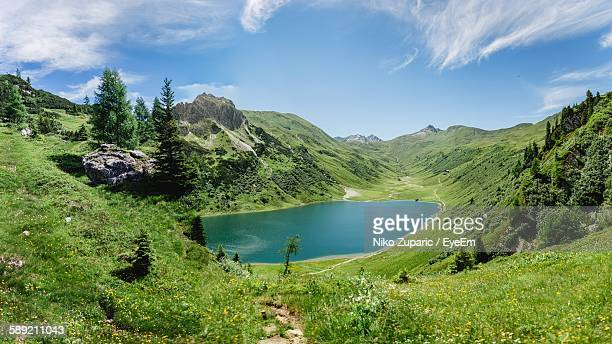 Scenic View Of Lake Amidst Trees At Tappenkarsee