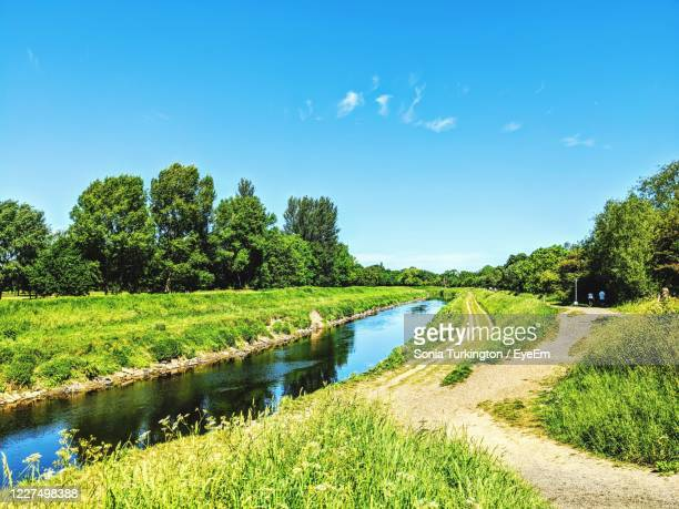 scenic view of lake amidst trees on field against blue sky - グレーターマンチェスター ストックフォトと画像