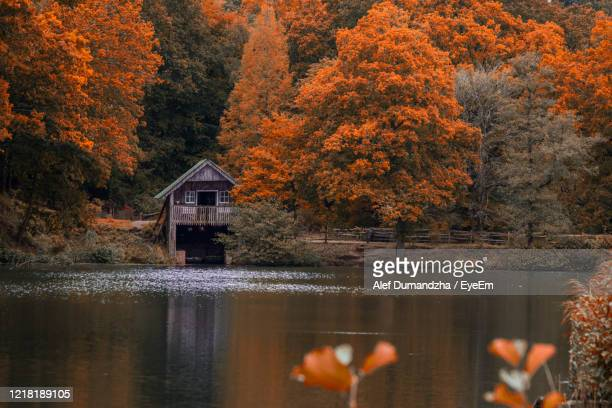 scenic view of lake and boathouse in forest during autumn - tranquility stock pictures, royalty-free photos & images