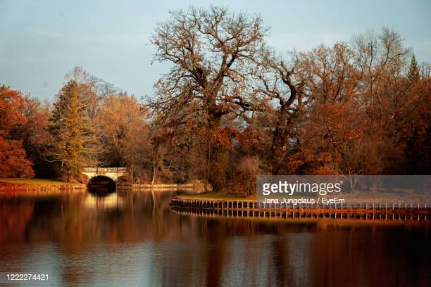 scenic view of lake and bridge against sky during autumn - kahler baum stock-fotos und bilder