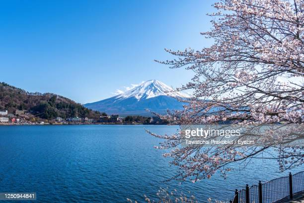 scenic view of lake and mountains against clear blue sky - 静岡市 ストックフォトと画像
