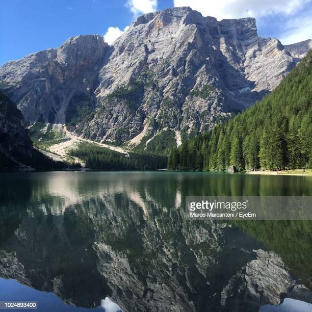 scenic view of lake and mountains against sky - pinaceae stock pictures, royalty-free photos & images