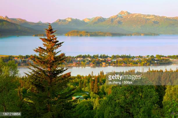 scenic view of lake and mountains against sky,homer,alaska,united states,usa - kachemak bay stock pictures, royalty-free photos & images