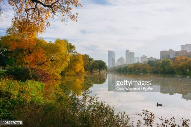 scenic view of lake by buildings against sky during autumn - milwaukee wisconsin stock pictures, royalty-free photos & images
