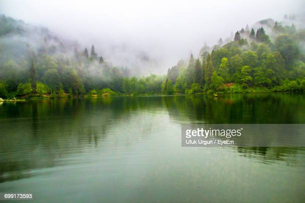 scenic view of lake by mountains in foggy weather - trabzon stock photos and pictures