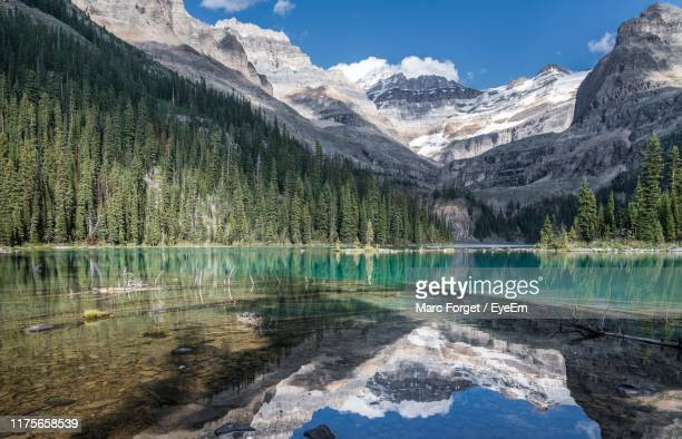 scenic view of lake by snowcapped mountains against sky - canadian rockies stockfoto's en -beelden