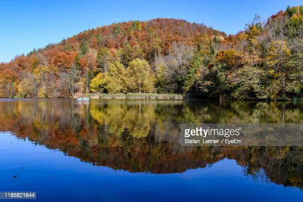 scenic view of lake by trees against clear sky - thal austria stock-fotos und bilder