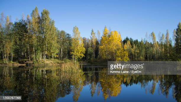 scenic view of lake by trees against clear sky - vanda stock pictures, royalty-free photos & images