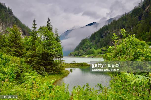 scenic view of lake by trees against cloudy sky - gerhard hagn stock-fotos und bilder