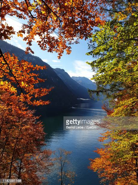 scenic view of lake by trees against orange sky - liebe stock pictures, royalty-free photos & images