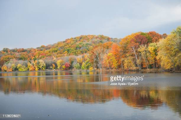 scenic view of lake by trees against sky during autumn - jose ayala stock pictures, royalty-free photos & images