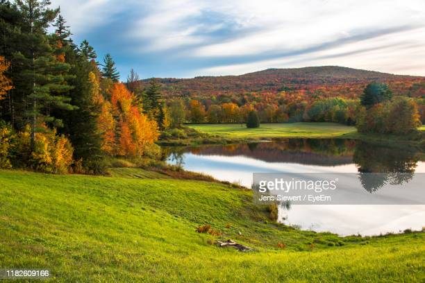 scenic view of lake by trees against sky during autumn - jens siewert stock-fotos und bilder