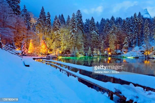scenic view of lake by trees against sky during winter,aareckstrasse,interlaken,switzerland - klein bildbanksfoton och bilder