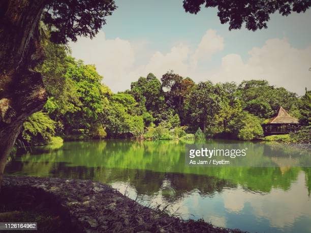 scenic view of lake by trees against sky - as stock pictures, royalty-free photos & images