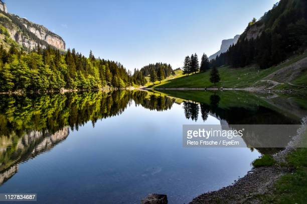 scenic view of lake by trees against sky - idyllic stock-fotos und bilder