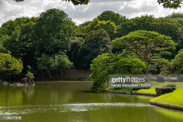 scenic view of lake by trees against sky - naruto stock photos and pictures