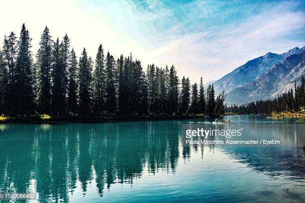 scenic view of lake by trees against sky - reflection lake stock photos and pictures