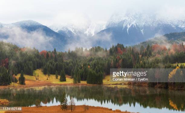 scenic view of lake by trees against sky - krün ストックフォトと画像