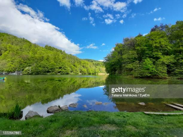 scenic view of lake by trees against sky - thal austria stock-fotos und bilder