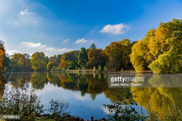 scenic view of lake by trees against sky - andre wilms eyeem stock-fotos und bilder
