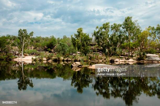scenic view of lake by trees against sky - billabong water stock photos and pictures