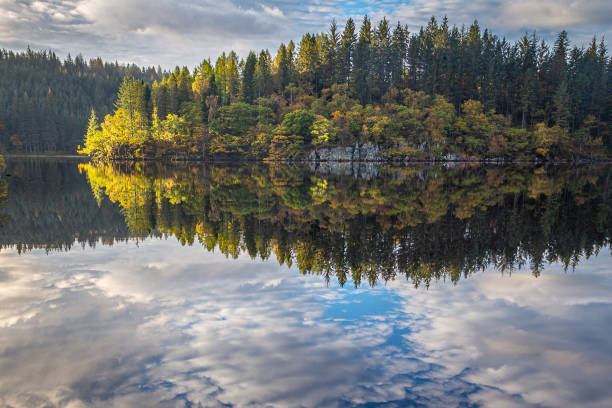 Scenic view of lake by trees against sky,Loch Ard,Stirling FK,United Kingdom,UK