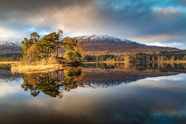 Scenic view of lake by trees against sky,Loch Tulla,Bridge of Orchy,Scotland,United Kingdom,UK