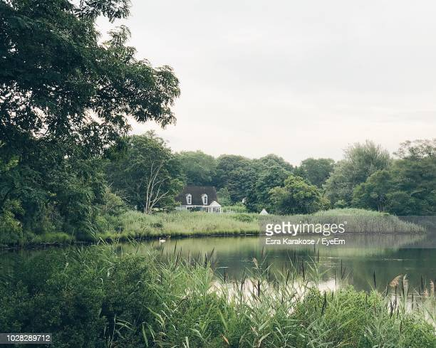 scenic view of lake by trees and building against sky - sag harbor stock photos and pictures