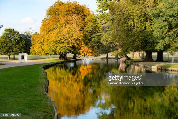 scenic view of lake by trees during autumn - luton stock pictures, royalty-free photos & images
