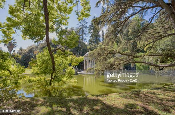scenic view of lake by trees - fabrizio villa stock pictures, royalty-free photos & images