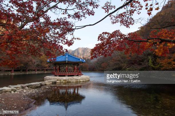 scenic view of lake during autumn - jeonju stock pictures, royalty-free photos & images