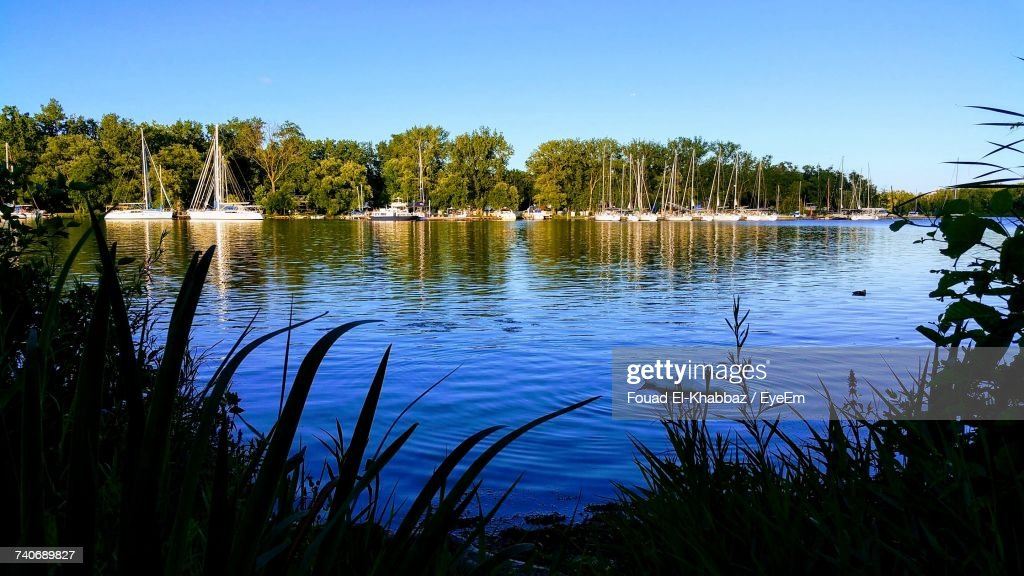 Scenic View Of Lake In Forest Against Clear Blue Sky : Stock Photo